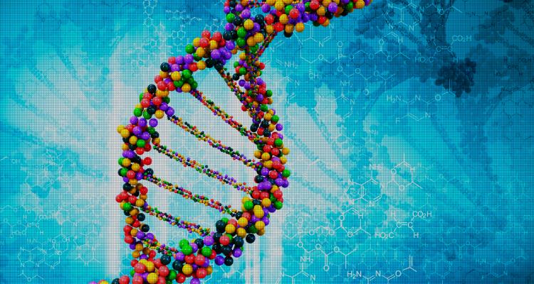 The Brainiacs_Good Genes